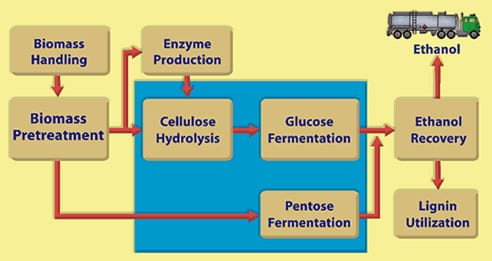 Ethanol from Cellulosic Biomass
